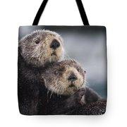 Sea Otters Huddled Together Tote Bag