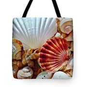 Sea Shells Tote Bag