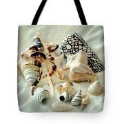 Sea Shells- Colorful Collection Tote Bag