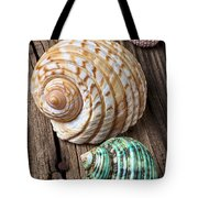 Sea Shells With Urchin  Tote Bag