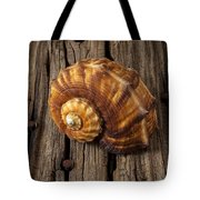 Sea Snail Shell On Old Wood Tote Bag