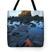 Sea Stacks And Star Fish Tote Bag