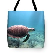 Sea Turtle 5 Tote Bag