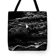 Seagull And Sandstone Tote Bag