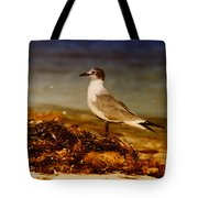Seagull At The Keys Tote Bag
