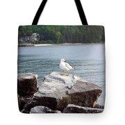 Seagull Awaits Tote Bag