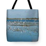 Seagull Flock Tote Bag