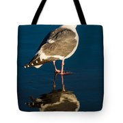 Seagull Harris Beach - Oregon Tote Bag