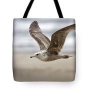 Seagull In Flight Tote Bag