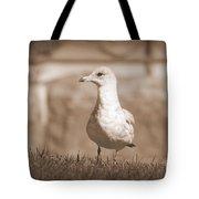 Seagull In Sephia Tote Bag