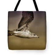 Seagull Oil Tote Bag by Deborah Benoit