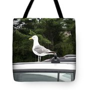Seagull On Car Tote Bag