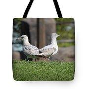 Seagull Opposites Tote Bag