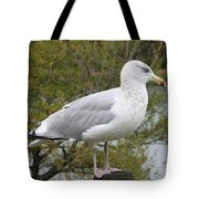 Seagull Outlook Tote Bag