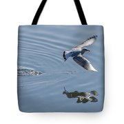 Seagull Reflection Tote Bag