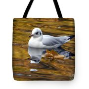 Seagull Resting Among Fall Leaves Tote Bag