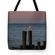 Seagull Seascape Tote Bag