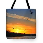 Seagull Serenity Tote Bag