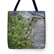 Seagull Steps Guard Island Alaska Tote Bag