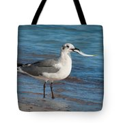 Seagull With Fish 1 Tote Bag