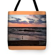 Seagull With Sunset Tote Bag