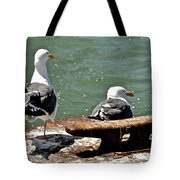 Seagulls Against Rust Tote Bag