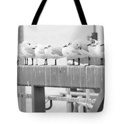 Seagulls In A Row Tote Bag