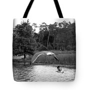 Seagulls In Flight Mb082bw Tote Bag