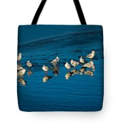 Seagulls On Frozen Lake Tote Bag