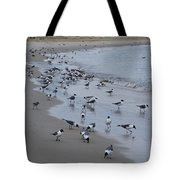 Seagulls On The Delaware Bay Tote Bag by Bill Cannon