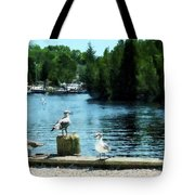 Seagulls On The Pier Tote Bag