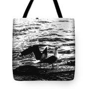 Seagulls  Tote Bag