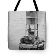 Seal Nap Time Black And White Tote Bag