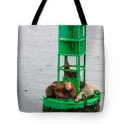 Seal Nap Time Tote Bag