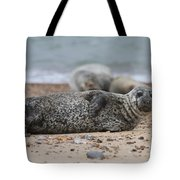 Seal Pup On Beach Tote Bag
