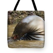 Sealion Grooming Tote Bag