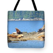 Seals 3 Tote Bag