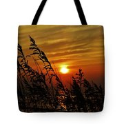 Seaoats And Sunrise Hatteras Island 1 7/31 Tote Bag
