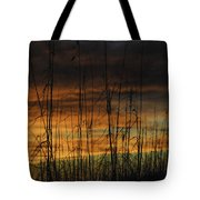 Seaoats Sunset Tote Bag