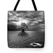 Searching For Land Tote Bag