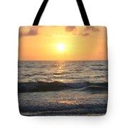 Seascape Delight Tote Bag