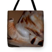 Seashell Abstract 1 Tote Bag