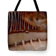 Seashell Abstract 3 Tote Bag