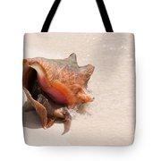 Seashell At The Beach Tote Bag