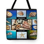 Seashell Collection 2 Tote Bag