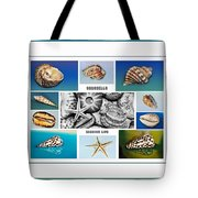 Seashell Collection 3 - Collage Tote Bag