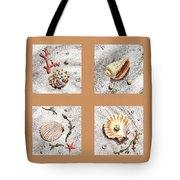 Seashell Collection II Tote Bag