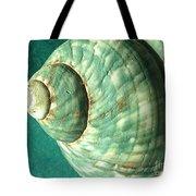 Seashell In Sunlight2 Tote Bag