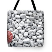 Seashell On White Pebbles Tote Bag