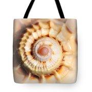 Seashell Wall Art 11 - Spiral Of Harpa Ventricosa Tote Bag